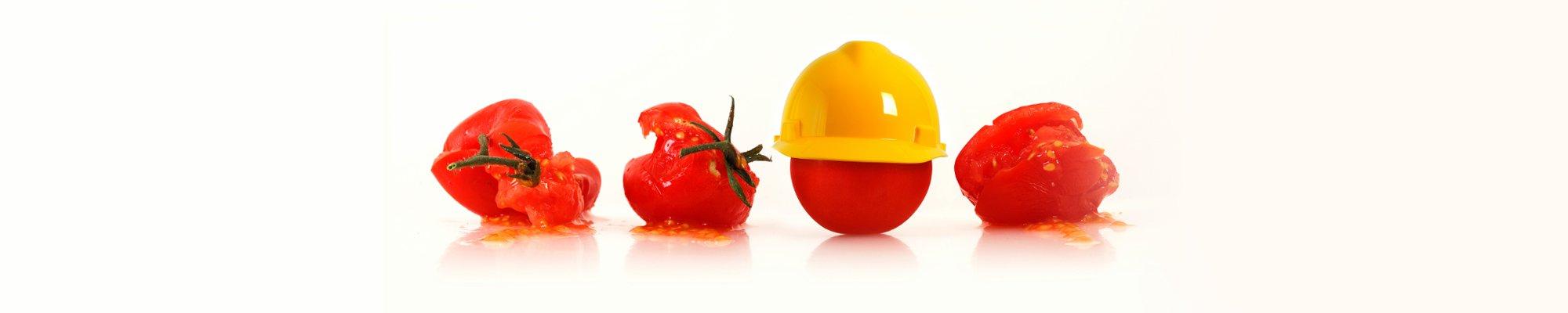 Food Safety Banner Image